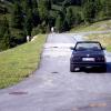 E30 Cabrio und Kühe von hinten ;)